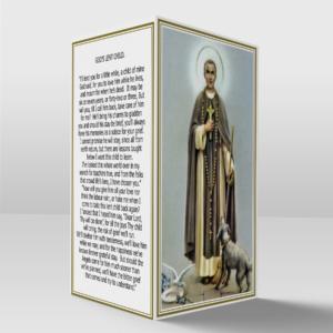 Saint Martin card